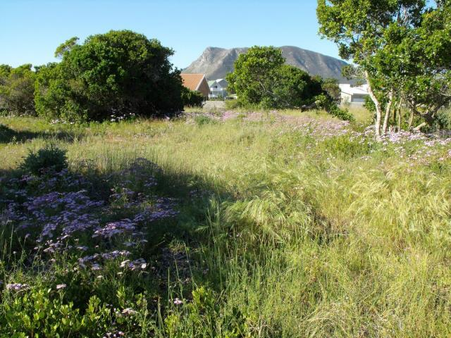 Land for Sale For Sale in Gansbaai - Home Sell - MR099066