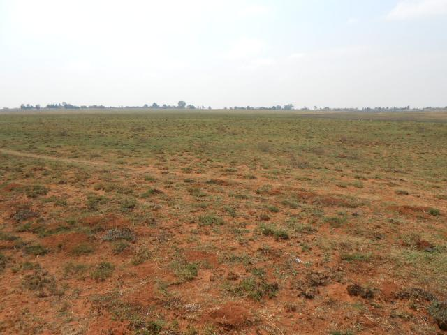 Land For Sale in Heidelberg - GP - Private Sale - MR099101