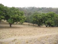 Land for Sale for sale in Verulam