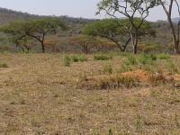 Land in Barberton