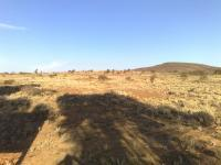 Land in Willowmore