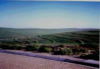 Land in Malmesbury