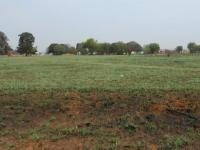 Smallholding for Sale for sale in Van Ryn S/H