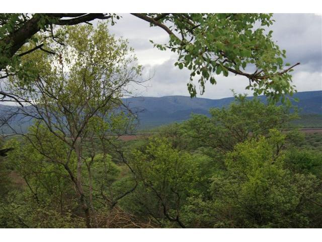 Land for Sale For Sale in Thabazimbi - Home Sell - MR100216
