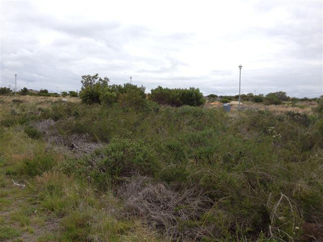 Land for Sale For Sale in Jeffrey's Bay - Private Sale - MR101250