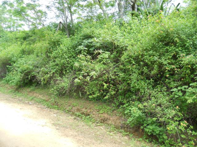 Land For Sale in Ramsgate - Home Sell - MR101635
