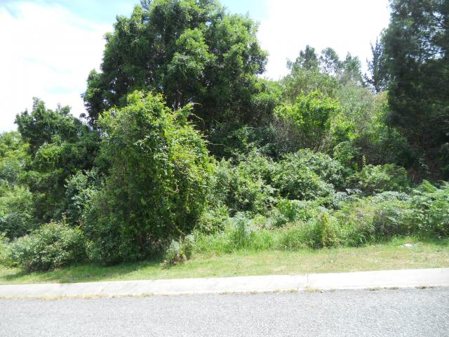 Land For Sale in Knysna - Home Sell - MR101887