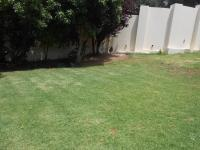 Backyard of property in Observatory - JHB