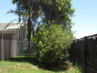 Garden of property in Table View
