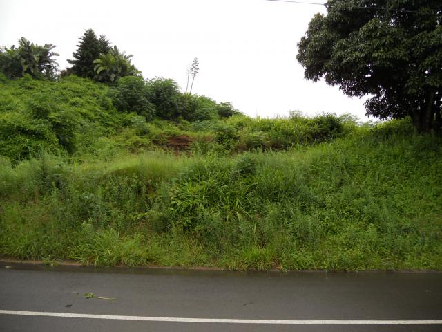 Land for Sale For Sale in Westville  - Private Sale - MR103702