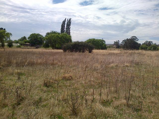 Land For Sale in Wakkerstroom - Home Sell - MR103987