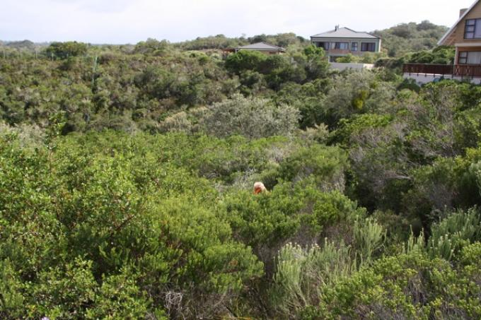 Land For Sale in Sedgefield - Home Sell - MR104685