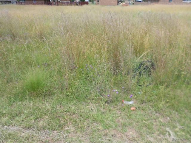 Land for Sale For Sale in Riversdale - Home Sell - MR105798