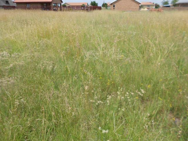 Land for Sale For Sale in Riversdale - Home Sell - MR105799