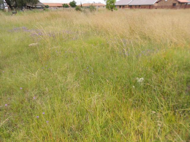 Land For Sale in Riversdale - Private Sale - MR105802