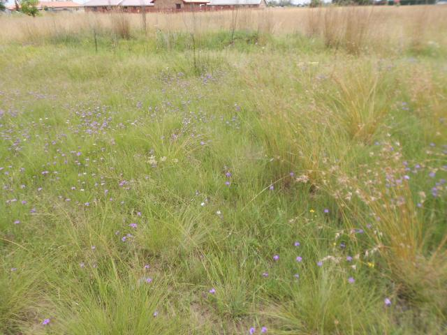 Land for Sale For Sale in Riversdale - Private Sale - MR105804