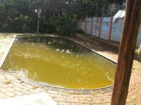 Backyard of property in Port Shepstone