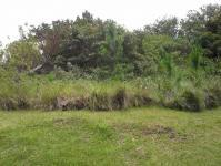 Land for Sale for sale in Southbroom