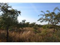 Smallholding for Sale for sale in Polokwane
