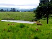 Land in Howick