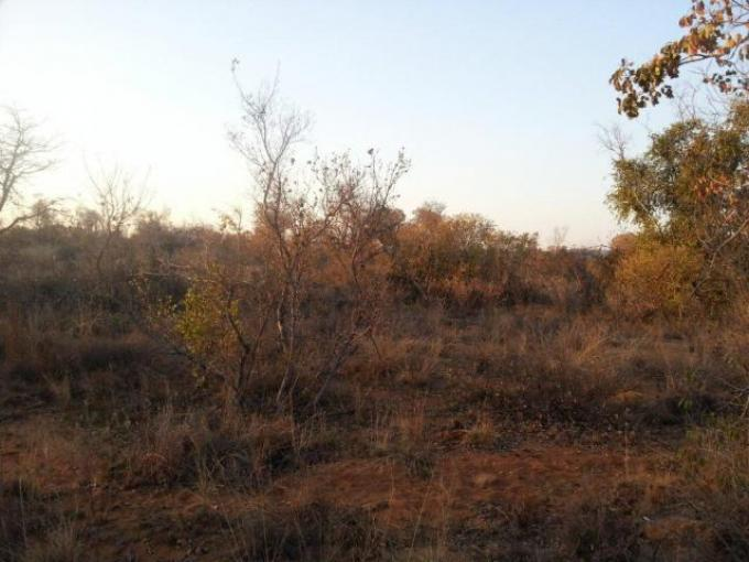 Land For Sale in Vaalwater - Private Sale - MR114714