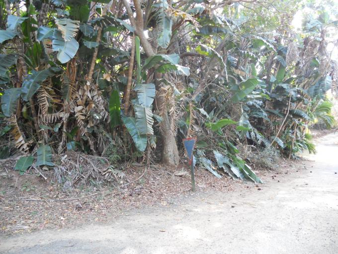 Land for Sale For Sale in Southbroom - Private Sale - MR115200