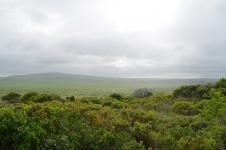 Land in Cannon Rocks