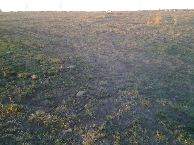 Land for Sale For Sale in Oranjeville - Home Sell - MR116445