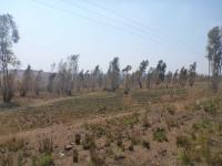 Smallholding in Krugersdorp