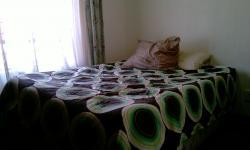 Bed Room 2 - 10 square meters of property in Karenpark