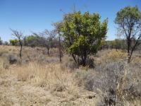 Land in Modimolle (Nylstroom)