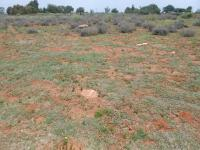 Land for Sale for sale in Henley-on-Klip