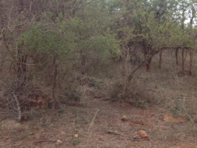 Land For Sale in Marloth Park - Private Sale - MR119201