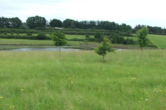 Land for Sale For Sale in Nottingham Road - Home Sell - MR120316