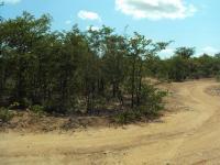 Land in Phalaborwa