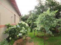 Backyard of property in Sydenham - JHB
