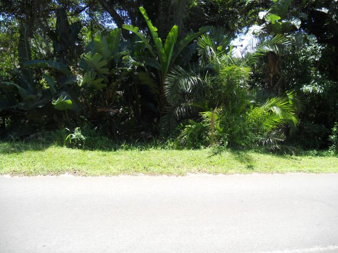 Land For Sale in Palm Beach - Home Sell - MR123915