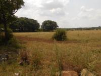Land for Sale for sale in Farm Haakdoornboom