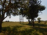 Backyard of property in Pretoria Rural