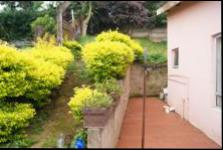 Backyard of property in Tongaat