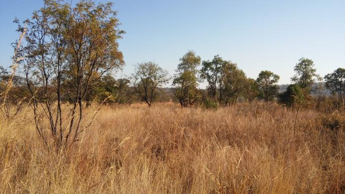 Absa Bank Trust Property Smallholding for Sale For Sale in Cullinan - MR130091