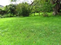 Backyard of property in Knysna