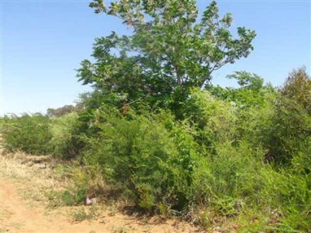 Standard Bank EasySell Land for Sale For Sale in Klerksdorp - MR135435