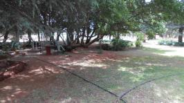 Garden of property in Delmas