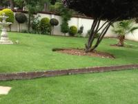 Backyard of property in Petervale