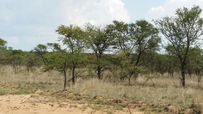 Land for Sale For Sale in Polokwane - Home Sell - MR139109