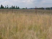 Land for Sale for sale in Farmall A.H.