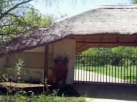3 Bedroom 2 Bathroom Cluster for Sale for sale in Leeuwfontein Estates