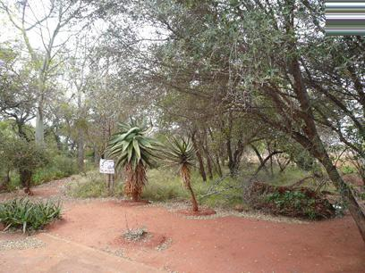 Standard Bank Repossessed Land for Sale on online auction in Mookgopong (Naboomspruit) - MR14466
