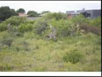 Front View of property in Bushmans River